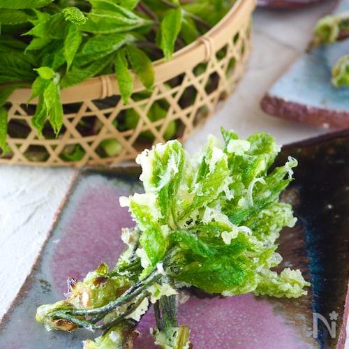 【天ぷら粉以上の自家製天ぷら粉】薄力粉でカリッと山菜の天ぷら