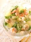 魚介とグレープフルーツのコンソメジュレサラダ