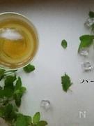 ハーブコーディアル~3種のレモン系ハーブ~