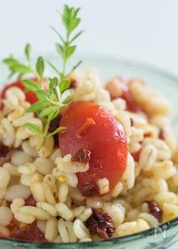 『Wトマトと麦の赤白サラダ。』