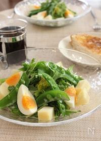 『春野菜のニース風サラダ』