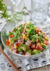 『ツナと彩り野菜のチョップドサラダ』
