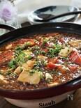 牛ひき肉とトマトの麻婆豆腐