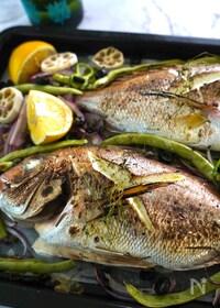 『切って並べてオーブンへ。白身魚のグリル。』