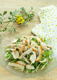 『【あともう1品に】レンジ調理で簡単!水菜とささみのサラダ』
