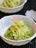 キャベツと桜えびのチーズ和え 【作りおき】