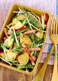 『作り置き*さつま芋とベーコンと水菜のハニマスサラダ』