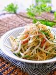 【らくレピ】もやしと香味野菜のさっぱり和風ナムル
