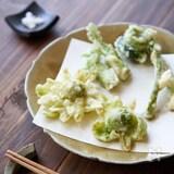 サクッと揚げるコツも紹介!山菜の天ぷら