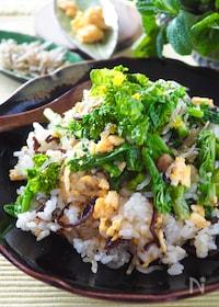 『【混ぜるだけ炒飯】菜の花とじゃこの炒めない炒飯』
