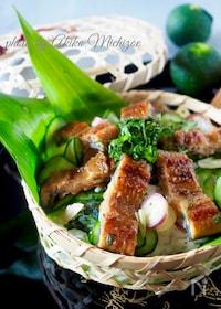 『鰻ときゅうりのちらし寿司【市販の蒲焼きかさ増し】』