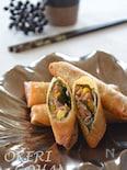 納豆と挽肉のおつまみ春巻き