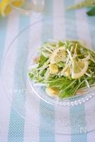 レモンで爽やか♪「ツナと水菜のレモンドレッシングサラダ」