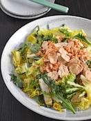 【簡単おいしい】白菜ざくざくサラダ