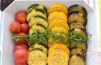 麺つゆでOK!夏野菜の常備菜 カラフル焼き浸し