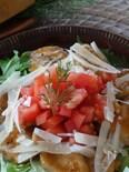 甘辛鶏胸肉のサラダ風、パルミジャーノ・レッジャーノがけ
