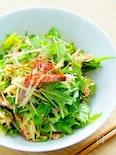 水菜と長葱の叉焼サラダ