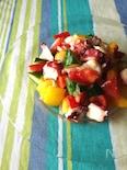 タコと夏野菜の塩レモンサラダ