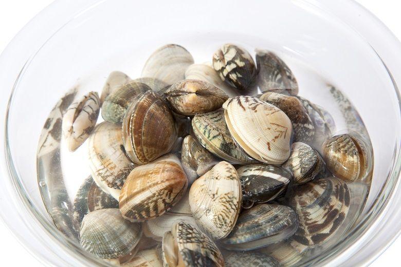 あさり(貝)の砂出し