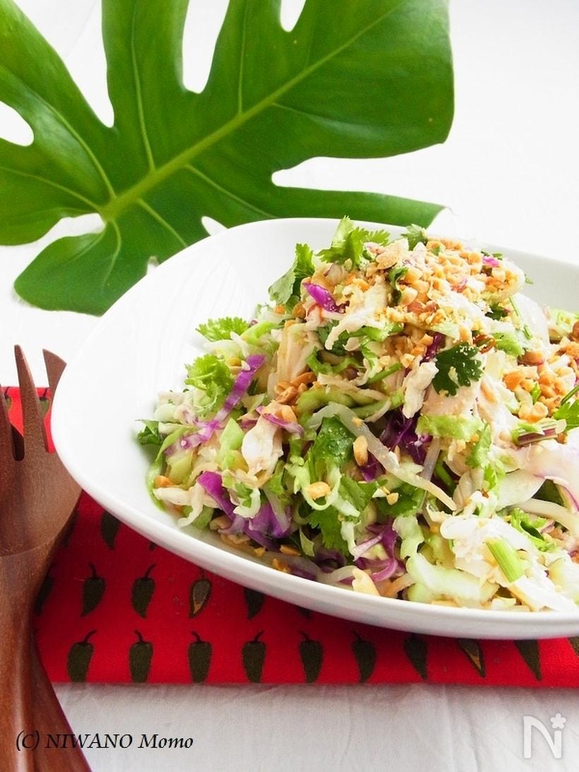 白い皿に盛られた、カンボジア風チキンサラダ