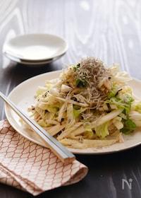 『純白塩昆布ドレッシングの白菜サラダ』