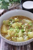 トロッと口の中でとろけます♡冬瓜とひき肉の和風カレーとろみ煮