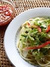 サラダ麺~サルサ風つけタレ