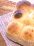 【ほっときもちもちパン】【トースターで焼ける】ちぎりパン
