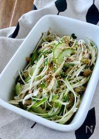 『新ごぼうの搾菜サラダ』