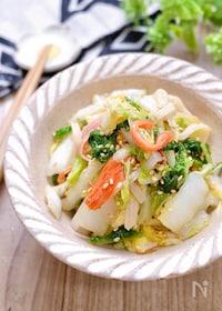『白菜で簡単副菜♡『白菜とかにかまのごまポン酢サラダ』』