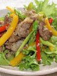 豚肉の中華炒めサラダ