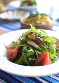 『香ばしいきのことわかめのサラダ 』