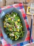 抱えて食べたい♡『水菜とひじきの栄養満点サラダ』
