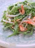 春菊の簡単ごまサラダ