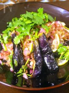 揚げ茄子の紫玉ねぎハーブサラダ