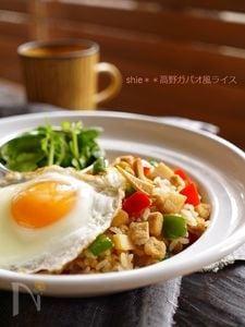 高野豆腐で簡単ヘルシー☆ガパオ風ライス☆