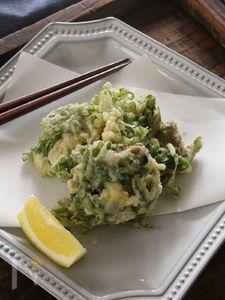 春菊と牡蠣のかき揚げ