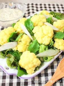 豆乳ドレッシングdeカリフラワーとゴボウのサラダ