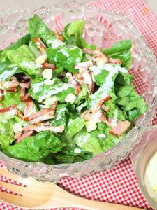 白菜のようなコスレタスdeシーザーサラダ