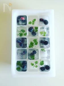 ホームパーティーアイテム♡ice cubes
