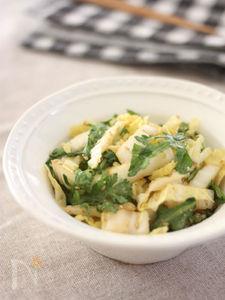 さっぱり美味しい白菜と春菊のごま和えサラダ