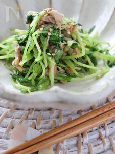 豆苗とツナの和え物、ゆず胡椒風味