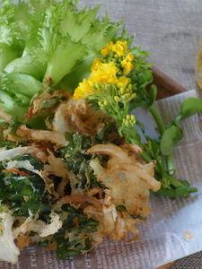 菜の花と新玉葱のかき揚げ