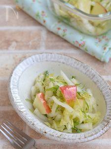 白菜とりんごのさっぱりサラダ【作りおき】