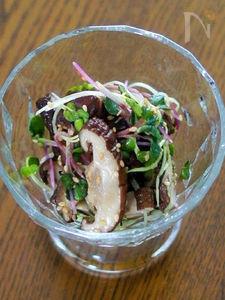生椎茸とカイワレのポン酢和え