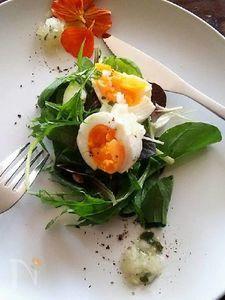 レンジゆで卵のハーブサラダ