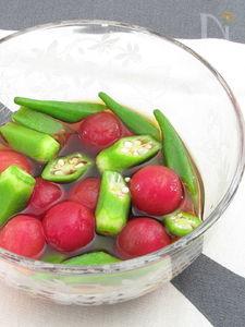 オクラとミニトマトの冷製おひたし