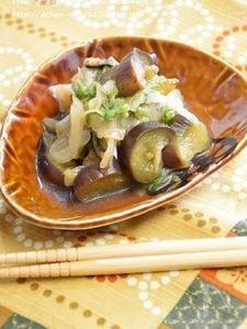 茄子と白菜のくたくた煮