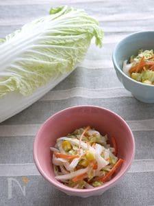 生白菜のサクサクコールスロー